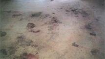 Dirty Carpets