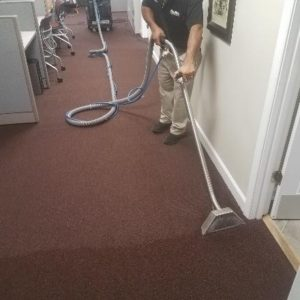Mister Kleen employee cleaning a carpet