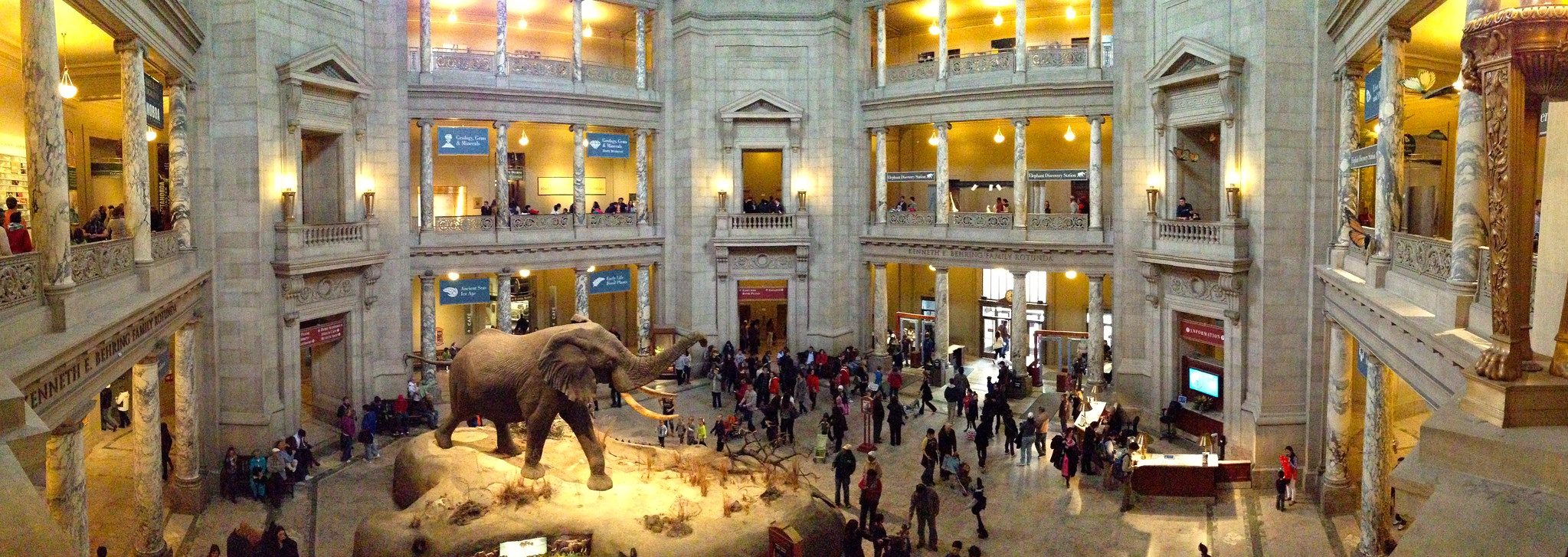Photo credit: National Museum of Natural History in DC by Blake Patterson is licensed under CC BY